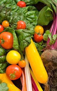 org-farm-veggies-250