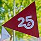 25-flag