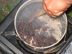 CookingQueenAnts-450