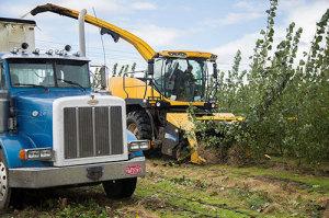 Harvester-at-Pilchuck-Nov-550