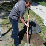 ASWSU volunteer planting tree at Ruby Street Park.