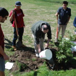 ASWSU volunteers planting trees at Ruby Street Park.