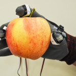 Sensors measure force and pressure during hand picking. (Photo by Long He, WSU)