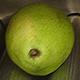 pear-web
