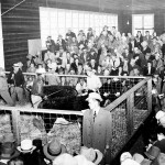 A 1950s-era purebred livestock sale held at the pavilion.