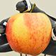 apple-robot-80