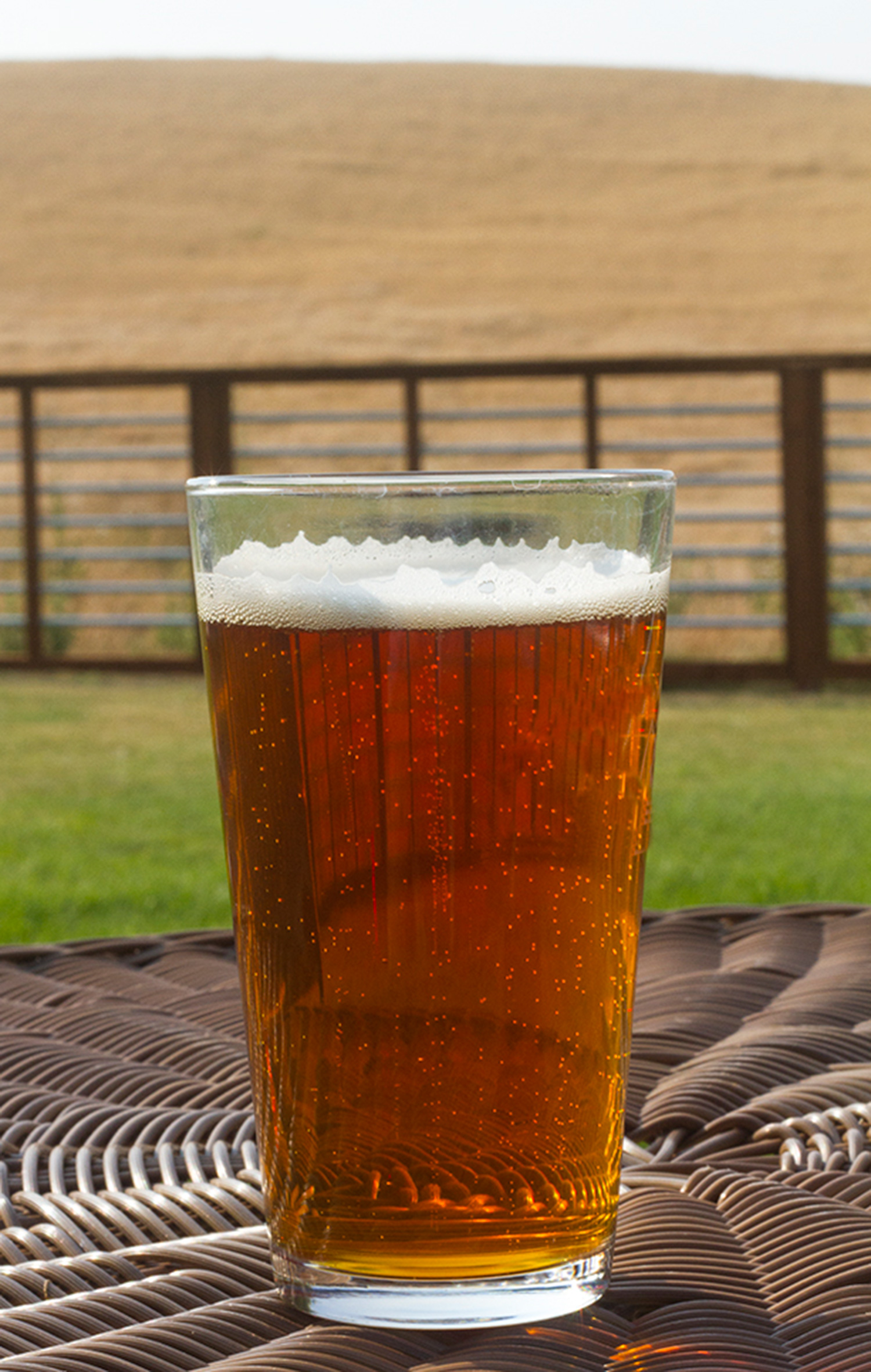 product differentiation in the beer industry The beer industry today in this paper i will be talking about the us beer industry and in short an overview of the brewing industry worldwide i will talk about the barriers to entry, economies of scale, government intervention, pricing, current market trends, product differentiation, and imports.