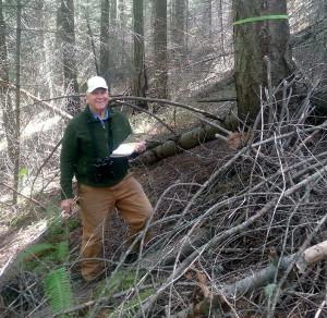 forest-stewardship
