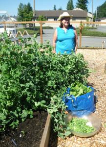 grow-groceries