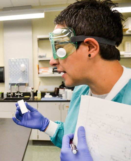 WSU Tri-Cities Launches New STEM Scholars Program