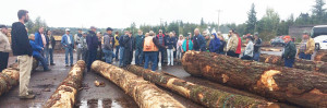 logging-symposium