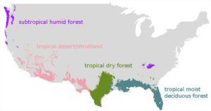 projected-forest-types-in-U.S.