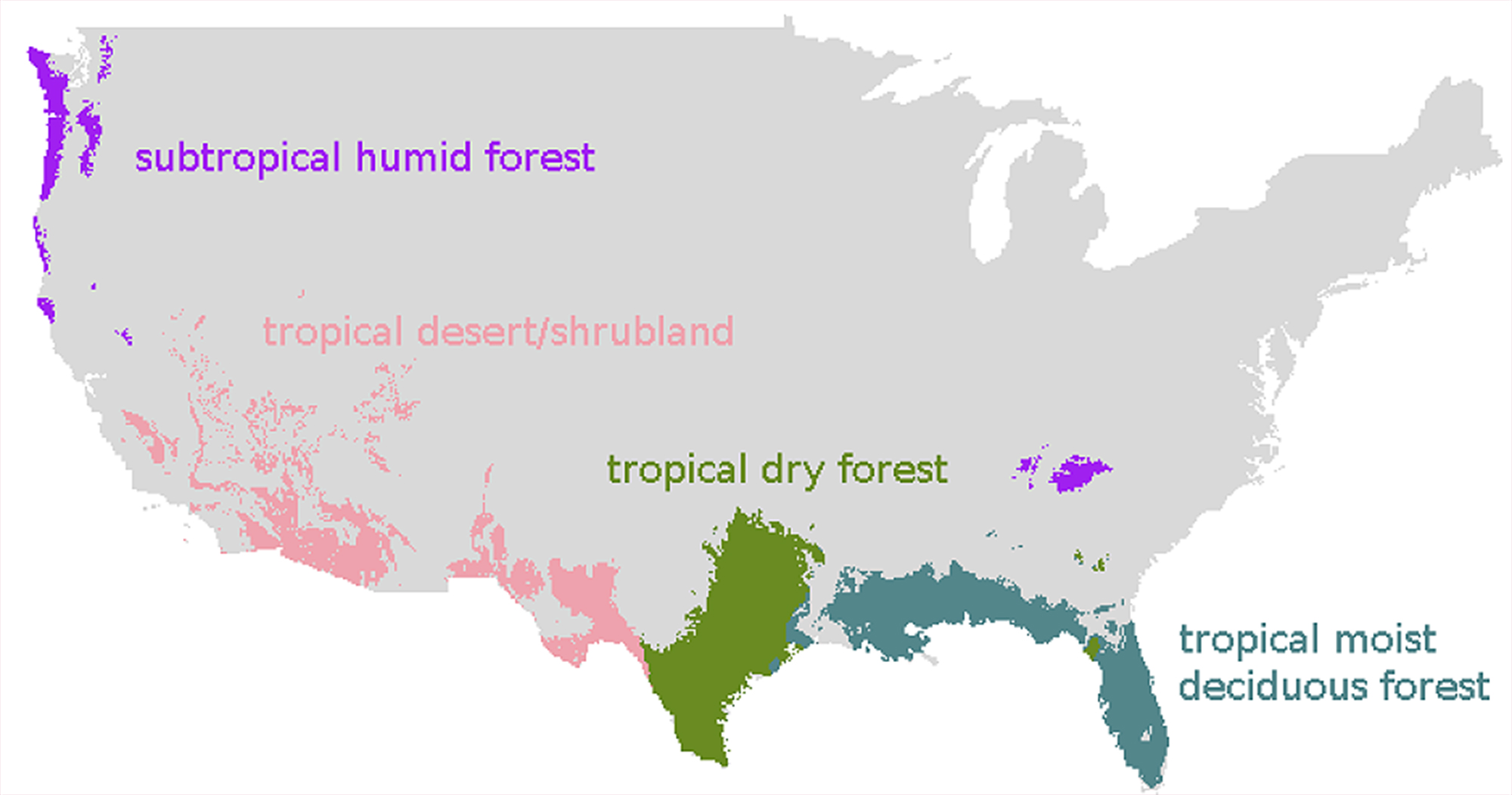 Model Predicts How Forests Will Respond To Climate Change WSU - Map of us forest types