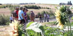 organic-farm-day