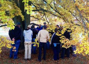 tree-workshop-in-Spokane
