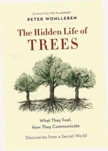 tree-book