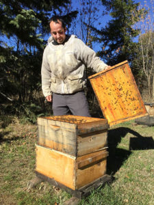 wsu-technician-philip-baker-with-hive-this-fall-web