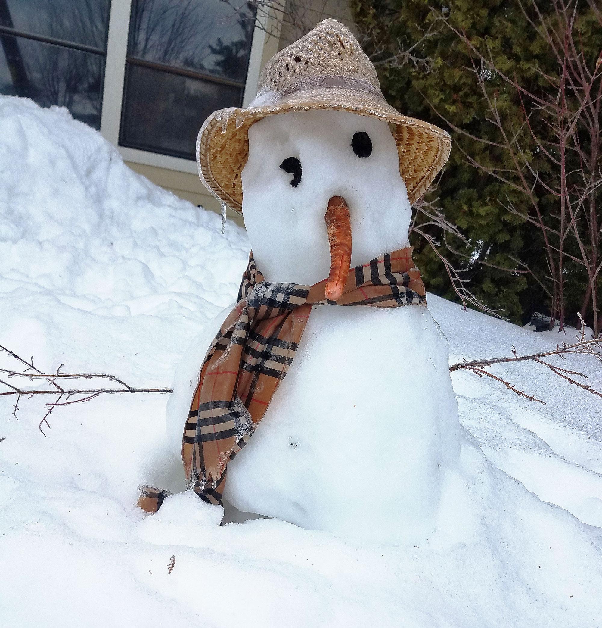 More wacko winter weather - and why   WSU Insider ...