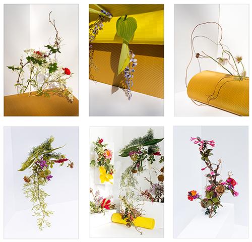 Plant life composite