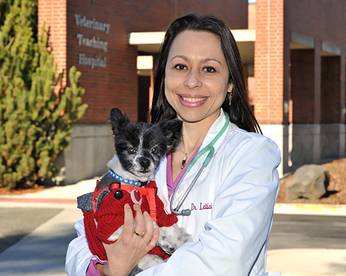 Dr. Leticia Fanucchi, WSU College of Veterinary Medicine, with pet.