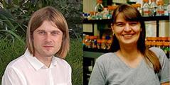 WSU researchers Andrei Smertenko - Mechthild Tegeder