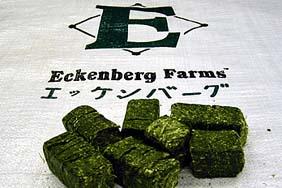 eckenburg farms hay cubes