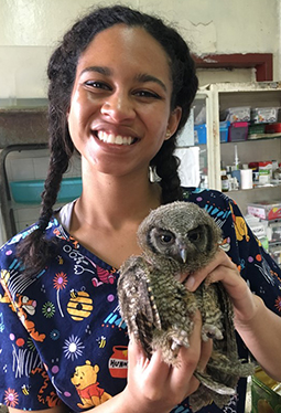 WSU student Elizabeth Flume holds owl receiving help at Universidad Nacional de Colombia