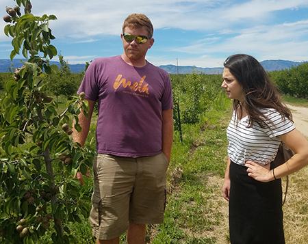 Tim Larsen and Bri Ewing pear orchard