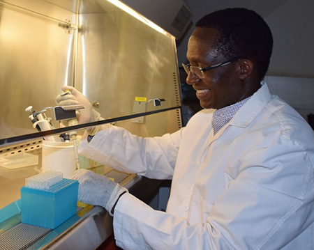Kariuki Njenga, WSU professor of virology and global health in Kenya, working in his lab.