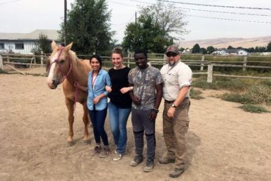 Students practice precise communication in haltering horses at senior instructor Jayne Beebe's Spirit of Hope equine center.