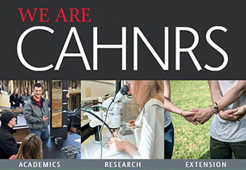 we are cahnrs front page on achievements report