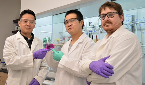 WSU study authors Ming Xian, professor of chemistry; Wei Chen, assistant research professor of chemistry; and Jacob Day, chemistry Ph.D. student (l-r).