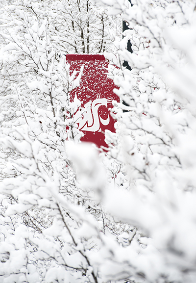 WSU campus buried in snow. Photo by Shelly Hanks, WSU Photo Services.