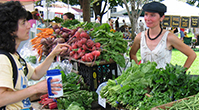 farmers market booth