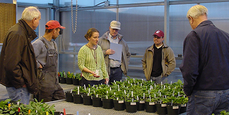 Developing a soil test for Fusarium wilt, former WSU student Emily Gatch, center, joins stakeholders reviewing soil samples from their fields.
