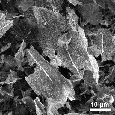 Tin oxide graphene hybrid materials as seen through scanning electron microscope.