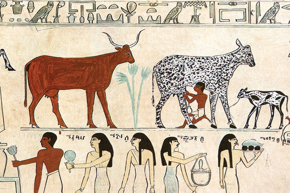 Egyptian painting of cattle and workers