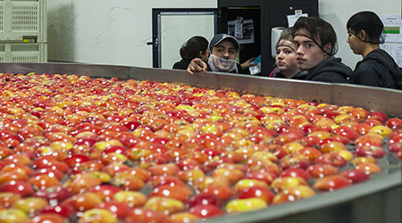 An employee at Zirkle Fruit Company shows Spark students the apple washing station in their packing plant. This is the first step in a packing process that ends with boxes of apples being shipped around the country and world.