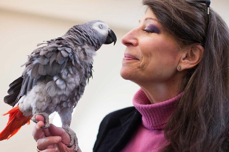 Irene Pepperberg with parrot
