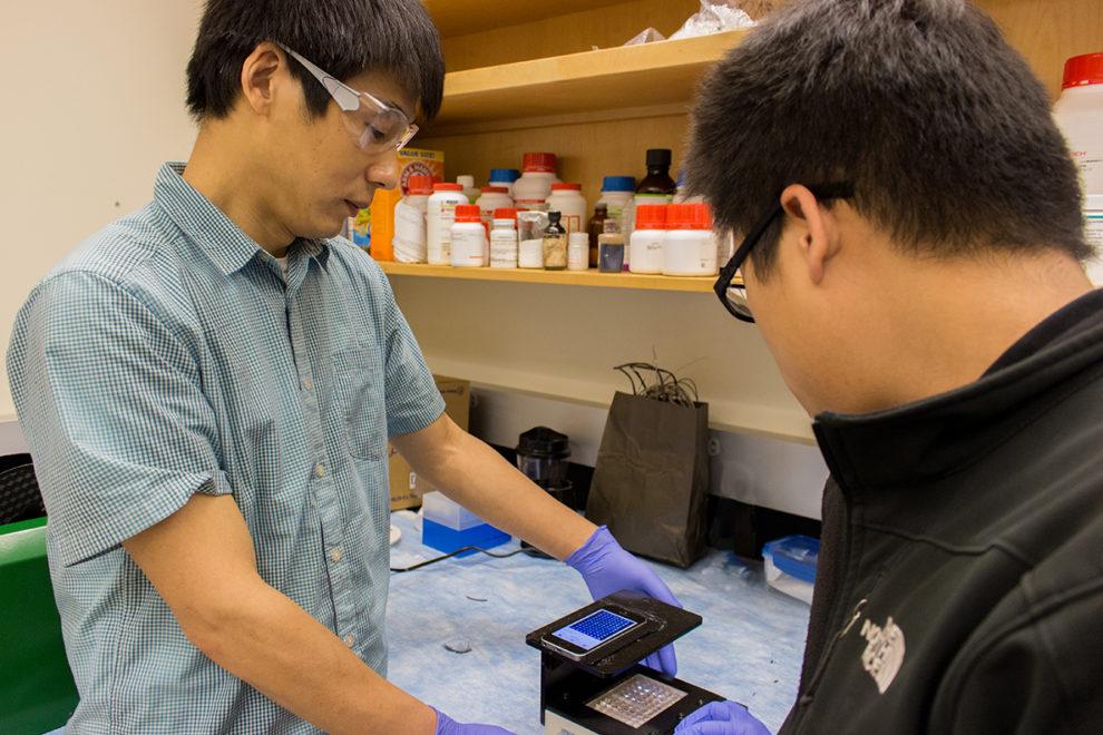 WSU Professor Lei Li and graduate student Yu-Chung Chang (l-r) testing smartphone.