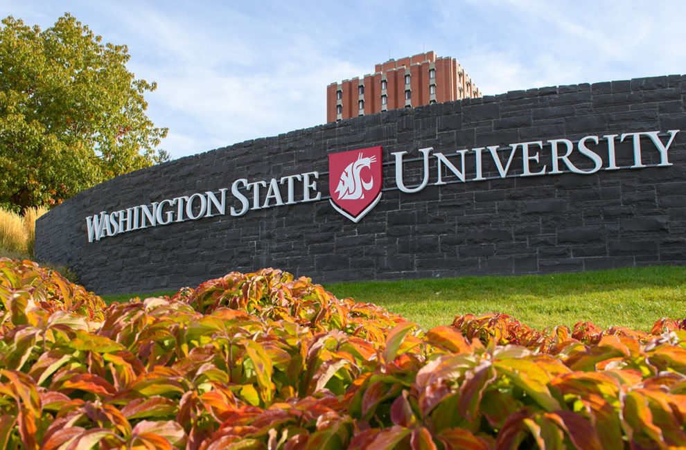 Sign reading 'Washington State University' at entrance to Pullman campus.