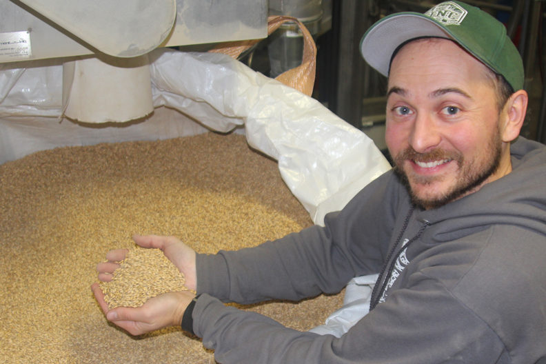 Joel Williamson, head maltster at LINC Malt, shows off a full container of freshly malted Lyon barley. Lending a unique local flavor, the inaugural batch is now part of pale ales on the Palouse (Seth Truscott-WSU Photo).