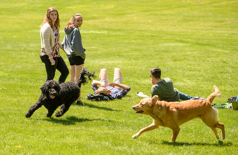 WSU-Pullman students enjoy the first day of a spring heat spell on April 23. Photo by Robert Hubner, WSU Photo Services.