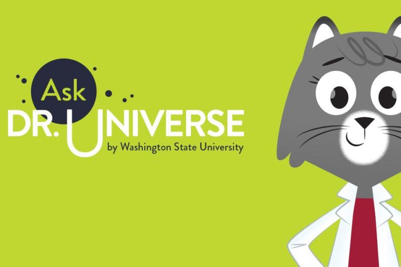 Ask Dr. Universe banner