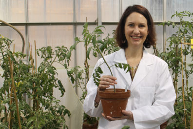 A closeup of Cynthia Gleason holding a plant inside a greenhouse.