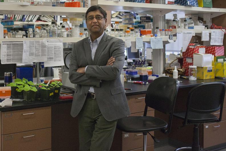man in scientific lab
