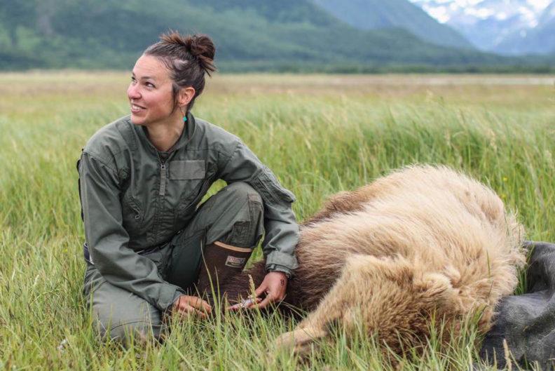 woman kneeling beside anesthetized bear