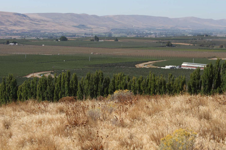 Panoramic view of drylands, trees, river, mountains and crops.