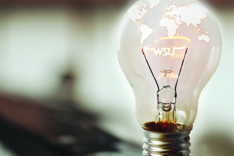 Annual report cover image of light bulb with WSU-shaped element.