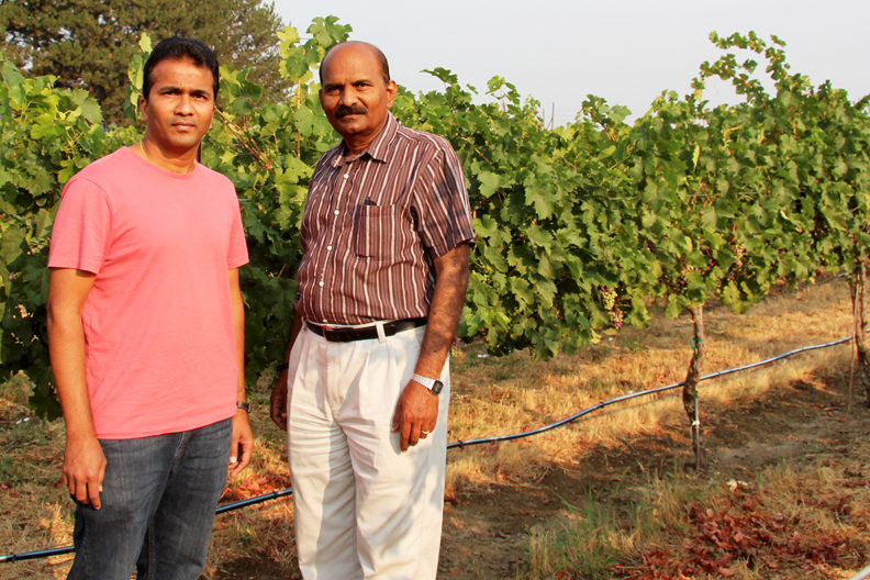 Jarugula and Rayapati stand in a vineyard.